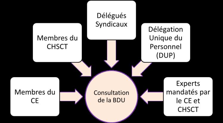 BDU_consultation_www.triakt.com